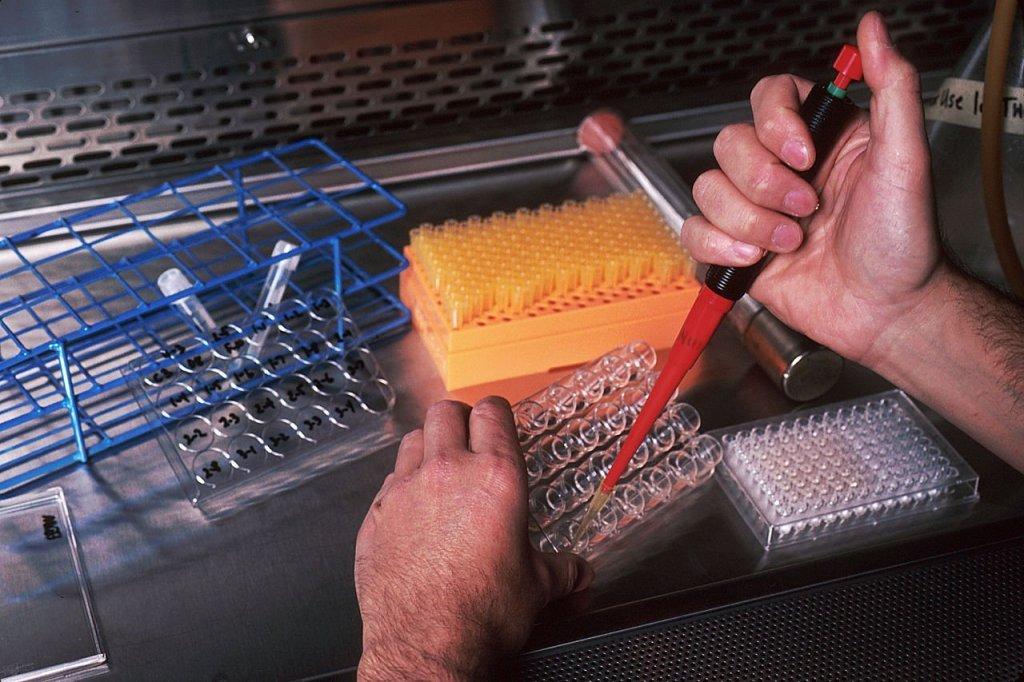 Testing monoclonal antibodies