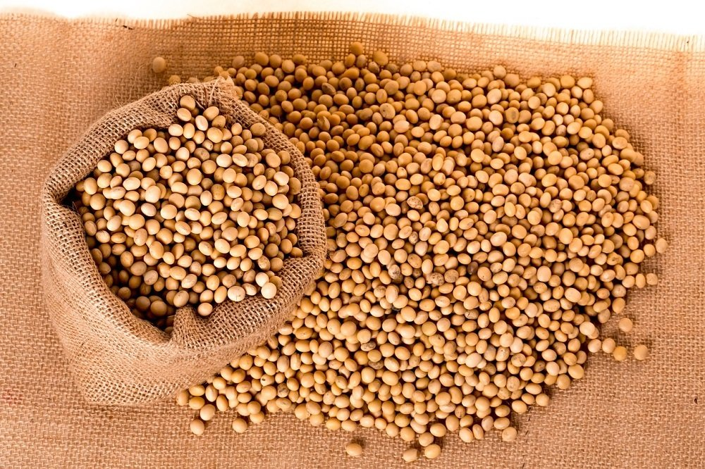 Will the soybean market rise in 2017, despite bad weather conditions?