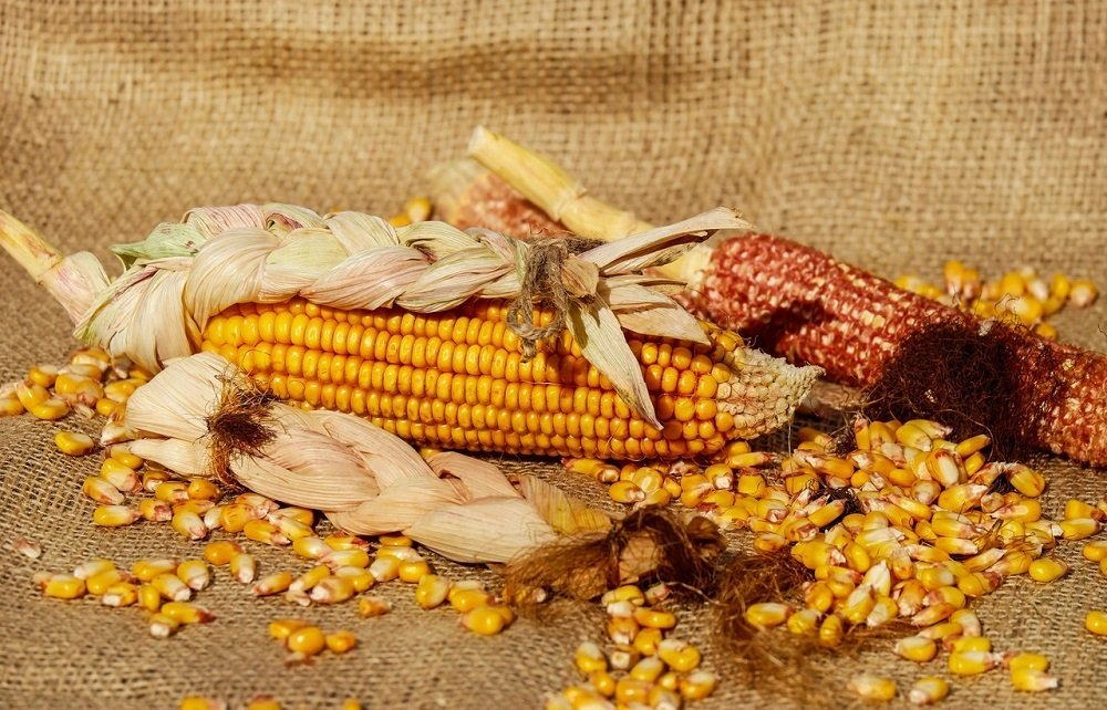 "Will USDA overestimate the ""Big 5"" again?"