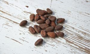 Recently delivered cocoa is not of exportable quality