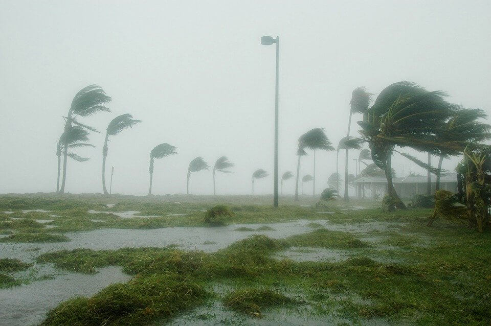 Hurricane Maria: Effects of storm.