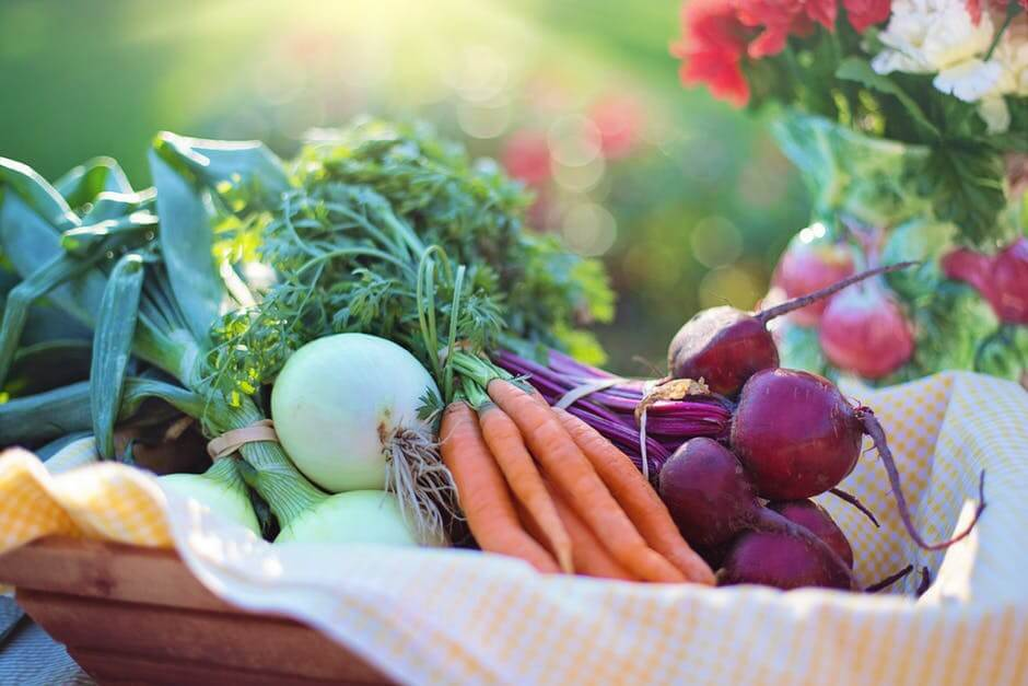 Organic vegetables for sustainable farming