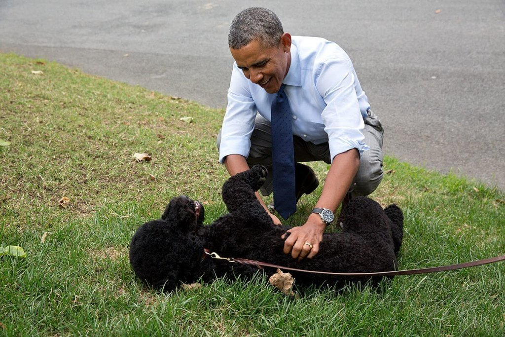 Obama with pet Sunny.