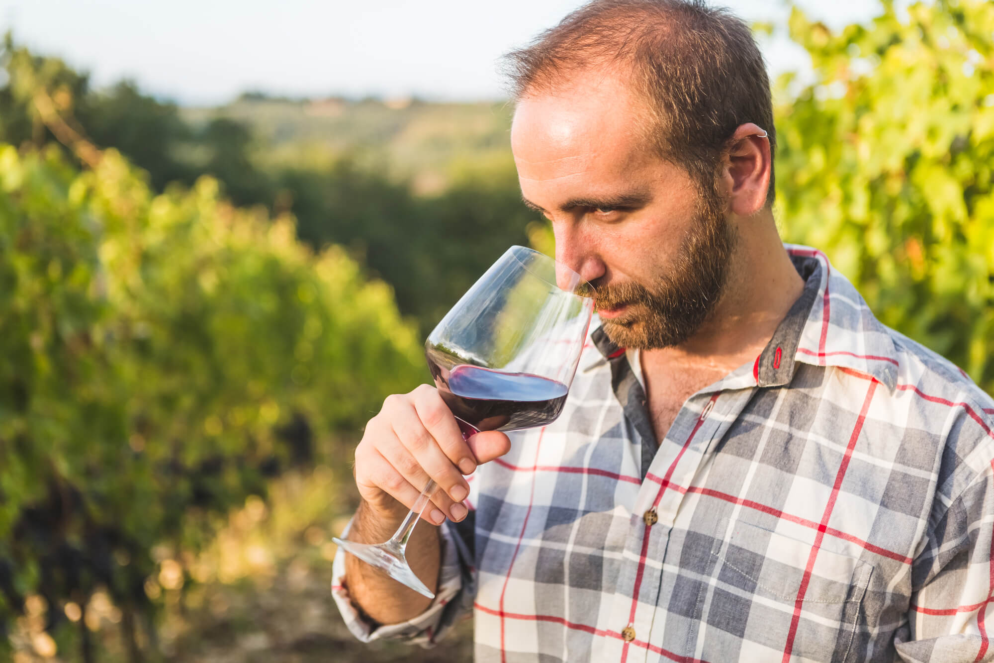 Man drinking wine.