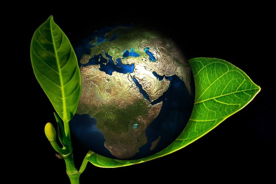 Ethics and environmental responsibility are values which investors look for in a business company.