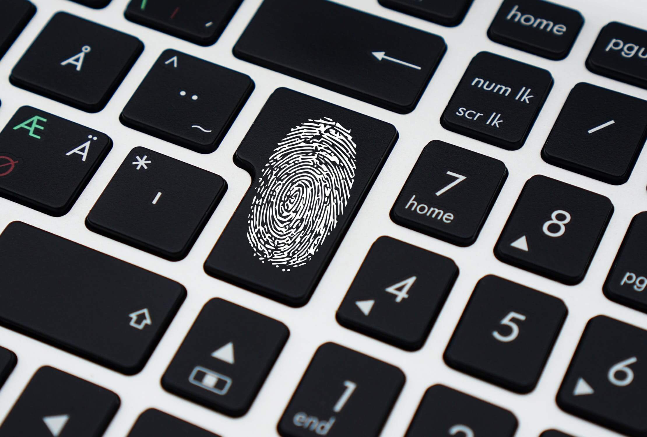 Digital fingerprinting identifies the profile of any person via user interface imprints, making hackers more vulnerable to capture.