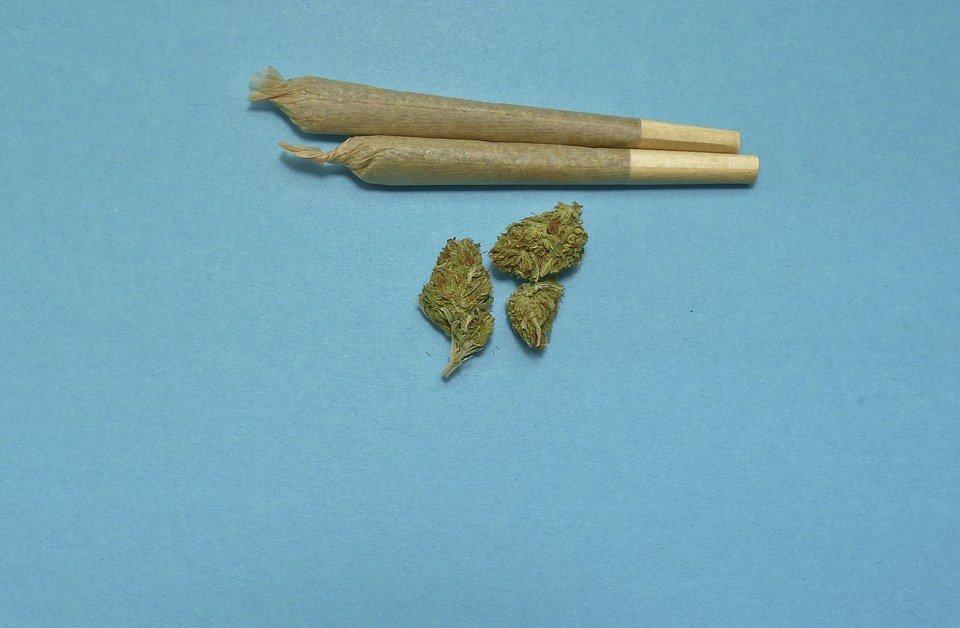 Aurora Cannabis pre-roll technology