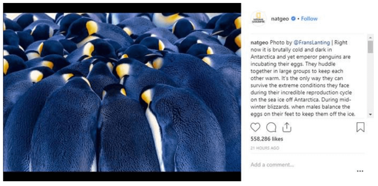 3 tips on how to build followers on Instagram