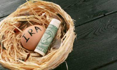 ira savings nest egg