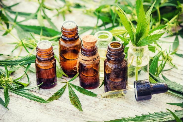 Cannabis companies on hyper-growth: MedMen Enterprises (OTC