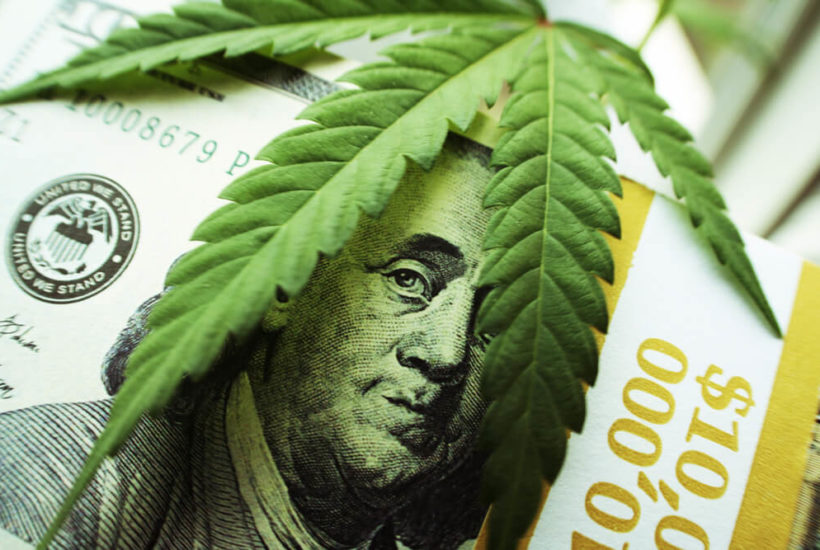 Cannabis companies lead the next stock market trend