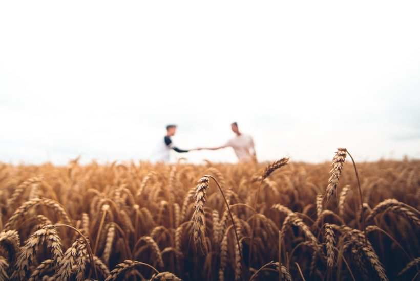 This picture show two people stretching hands representing the wheat market.