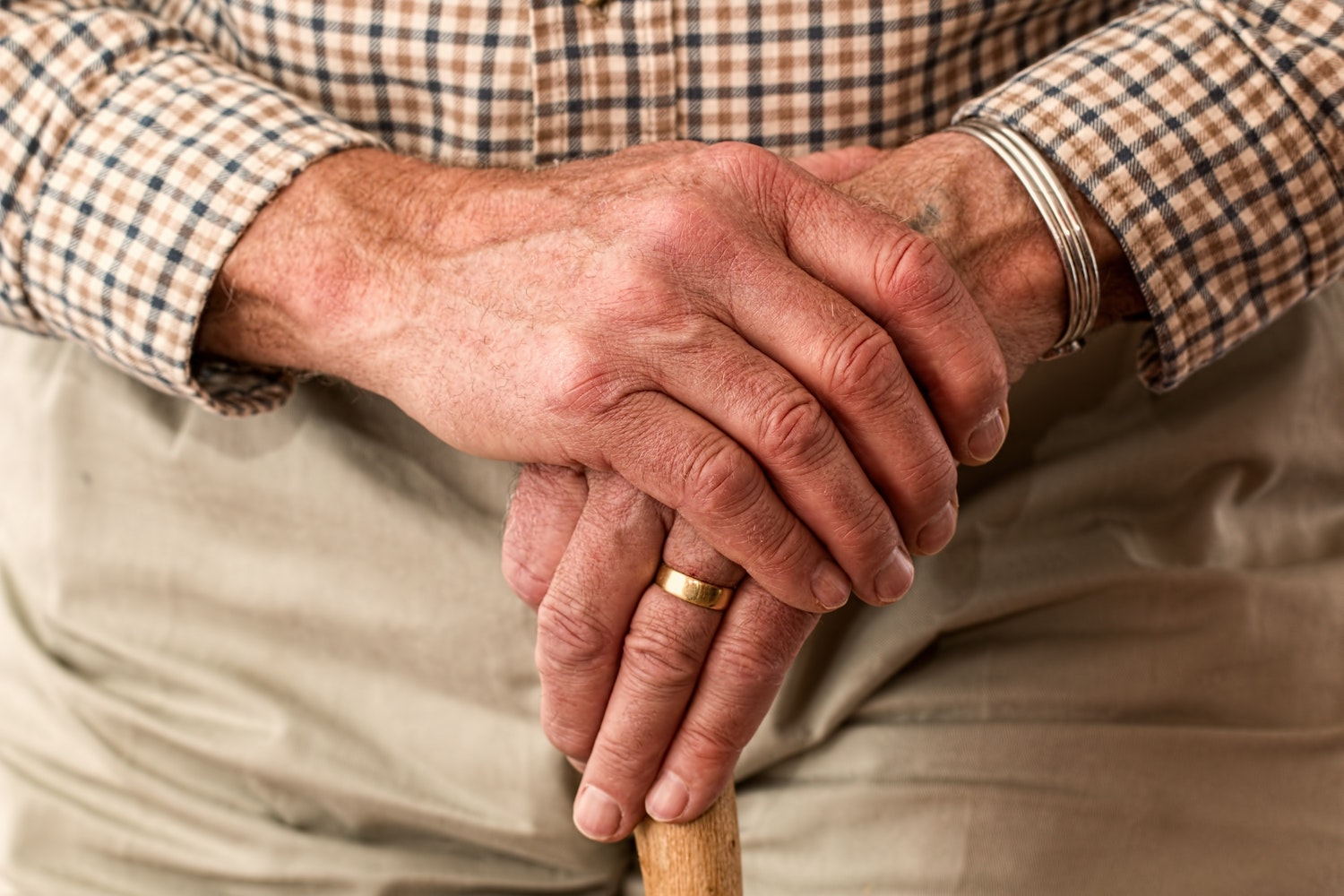 Experts debate cannabis potential in elderly health