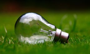 This picture show a light bulb, representing a reduction of energy.