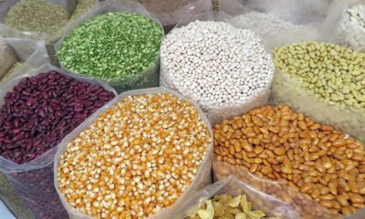 This picture show different beans and grains, representing the agricultural market.