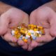This picture show a person holding some medical capsules.