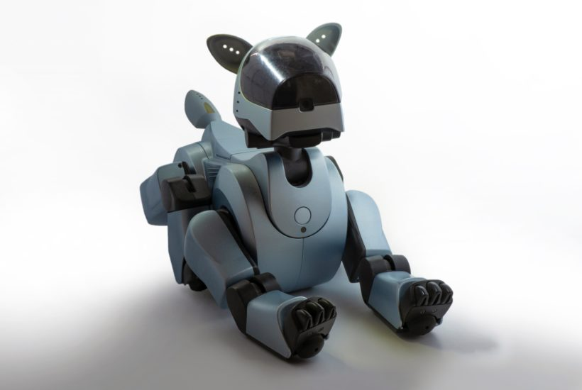 This picture show a robot pet.