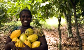 This picture show a woman holding some fruits.