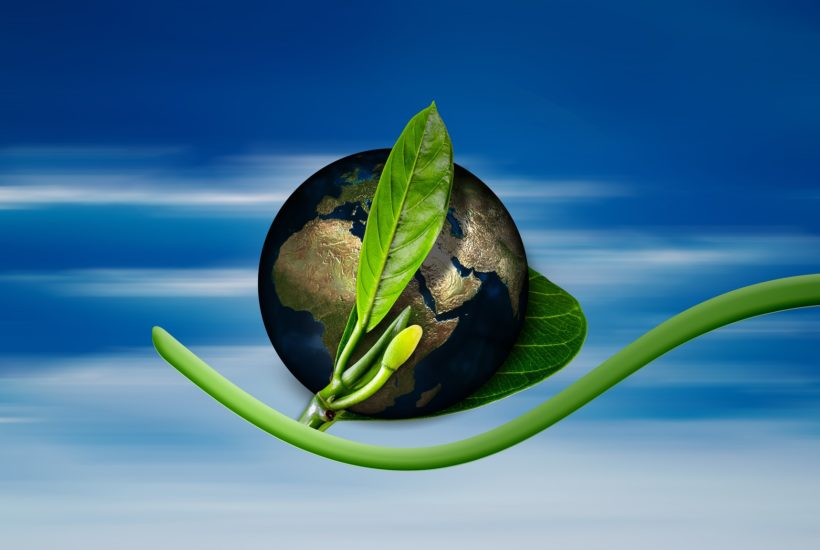 This picture represent green economy.