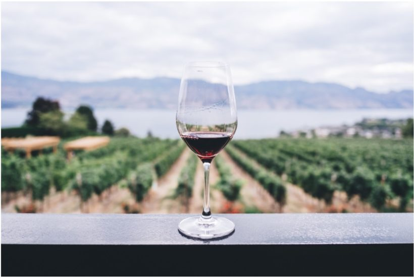 This picture show a wine glass.