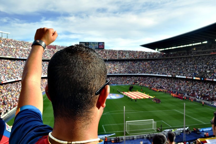This picture show a football fan in a stadium.