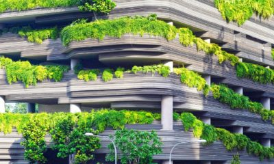 This picture show a building with a lot of plants.