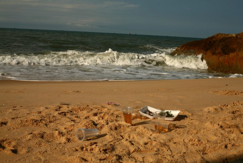 This picture show some plastic waste on a beach.