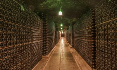 This picture show a wine cellar.